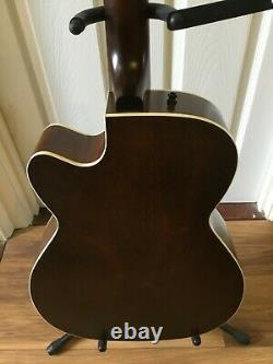 Art and Lutherie 12 string guitar