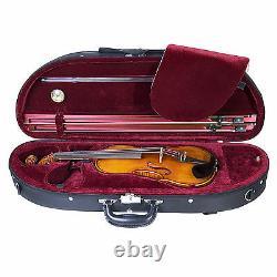 Cecilio CVN-700 1-Piece Back Flamed Ebony Fitted Violin with D'Addario String