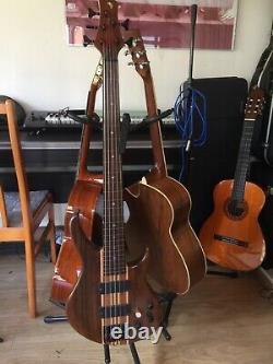 Custom 5 string fretless bass guitar beautiful Customised bass guitar in case