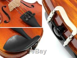 D'Luca Strauss Professional Violin Outfit 4/4 with SKB Case, Strings and Tuner