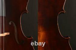 Special Offer! Modern Stradivari Copy Cello Fine Tone, Strong deep tone, dark ant